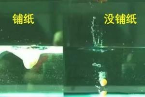 困扰14亿人的拉大便压水花问题清华博士给出了最科学的战略