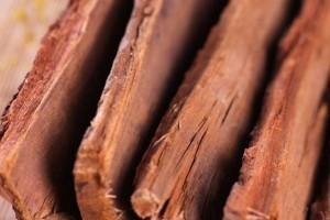 现在卡宾达树皮大约多少钱一斤