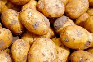 甲亢能吃土豆吗甲亢患者的饮食禁忌有哪些